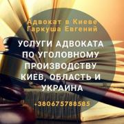 Assistance of a lawyer in case of an accident in Kiev